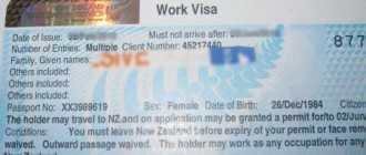 Рабочая виза в Новой Зеландии – сроки и особенности получения
