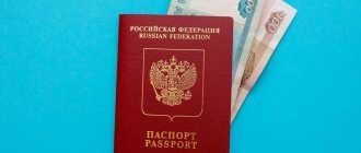 Правда ли, что скоро все иностранцы смогут получить гражданство России?