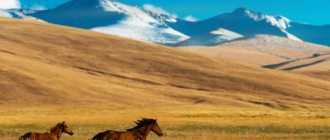 Казахстан — подробная информация о стране