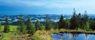 Баварский лес в Германии – волшебное место единения с природой