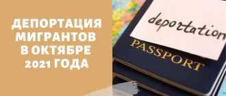 Подробности миграционной амнистии для граждан Кыргызстана в 2021 году
