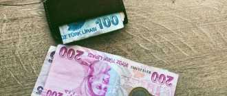 Какие деньги брать в Турцию